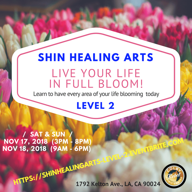 Shin Healing Arts - Level 2 - Manifest & Beyond